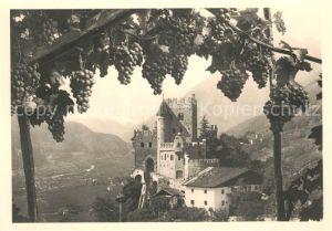 AK / Ansichtskarte Meran Merano Castel Fontana