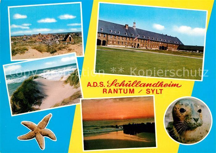 AK / Ansichtskarte Rantum Sylt ADS Schullandheim Duenen Strand Robbe Kat. Rantum (Sylt)
