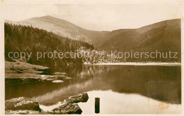AK / Ansichtskarte Arber Kleiner Arbersee Landschaftspanorama Bayerischer Wald