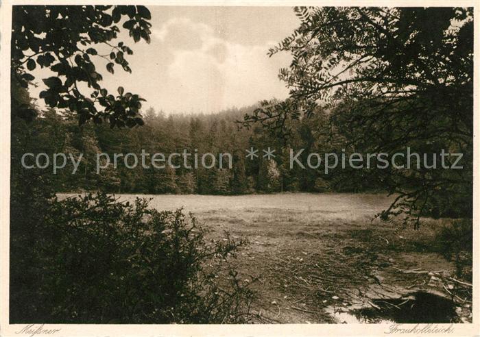 Abterode Frau Holle Teich am Meissner Wald Kat. Meissner
