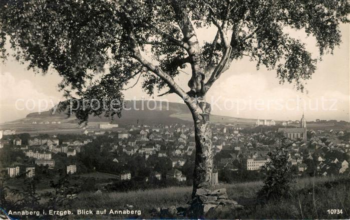 AK / Ansichtskarte Annaberg Buchholz Erzgebirge Panorama Annaberg Kat. Annaberg