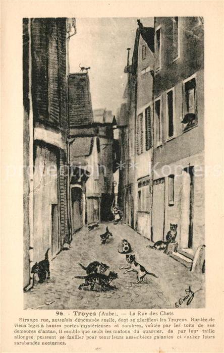 AK / Ansichtskarte Troyes Aube Rue des Chats Kat. Troyes
