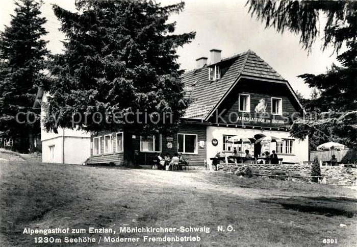 AK / Ansichtskarte Moenichkirchen Alpengasthof zum Enzian Kat. Moenichkirchen am Wechsel