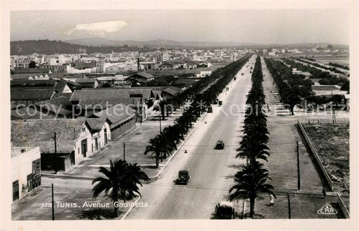 AK / Ansichtskarte Tunis Avenue Gambetta vue aerienne Kat. Tunis