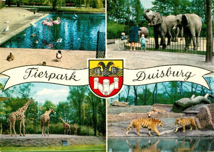 AK / Ansichtskarte Zoo Duisburg Flamingo Elefanten Tiger Giraffen Kat. Tiere