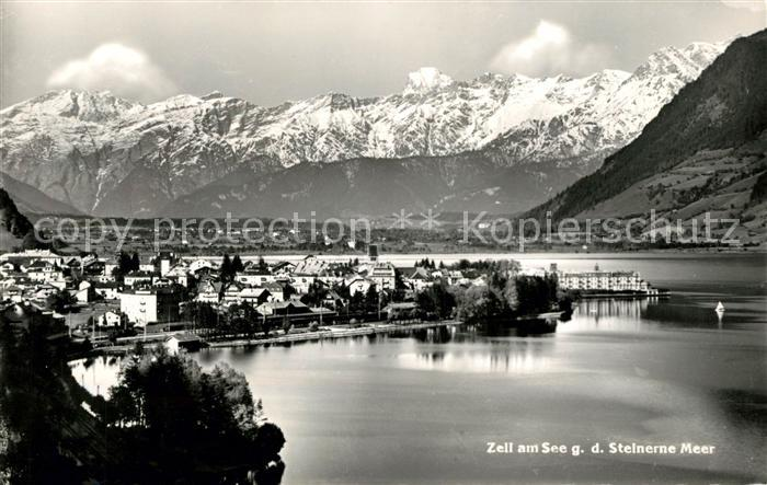 AK / Ansichtskarte Zell See Panorama mit Blick zum Steinernen Meer Alpenpanorama Kat. Zell am See