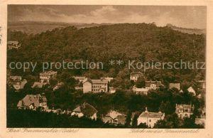 AK / Ansichtskarte Bad Freienwalde Blick in das Brunnental Landschaftspanorama Kat. Bad Freienwalde