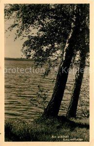 AK / Ansichtskarte Scharmuetzelsee Uferpartie am See Kat. Bad Saarow