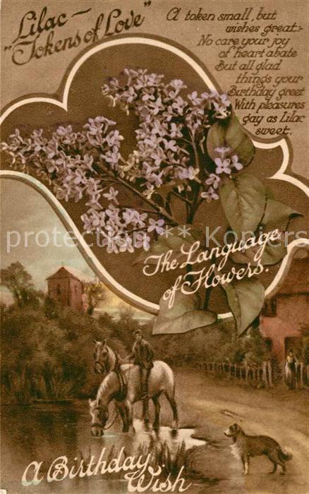 AK / Ansichtskarte Blumen Blumensprache Flieder Gedicht Geburtstag Lilac  Kat. Pflanzen