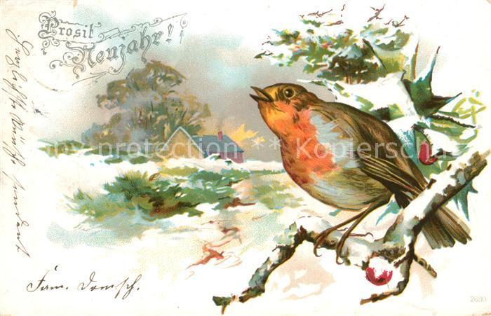 AK / Ansichtskarte Neujahr Rotkehlchen Litho Kat. Greetings