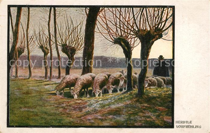 AK / Ansichtskarte Kuenstlerkarte Herdtle Vorfruehling Schafe Hirte  Kat. Kuenstlerkarte
