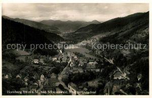 AK / Ansichtskarte Hornberg Schwarzwald Blick ins Gutachtal Kat. Hornberg