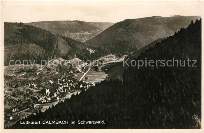 AK / Ansichtskarte Calmbach Enz Panorama Kat. Bad Wildbad
