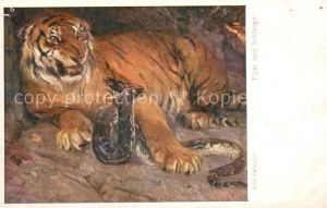 AK / Ansichtskarte Verlag Wiener Kunst Nr. 1071 Karl Fahringer Tiger und Schlange  Kat. Verlage
