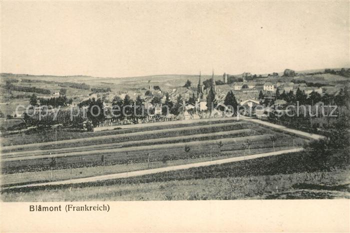 AK / Ansichtskarte Blamont Meurthe et Moselle Panorama Kat. Blamont