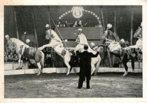 AK / Ansichtskarte Zirkus Pferde  Kat. Zirkus