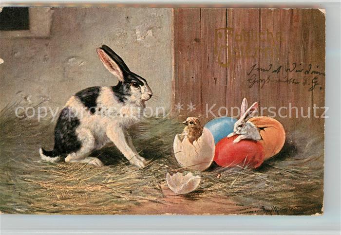 AK / Ansichtskarte Hasen Kueken Eier  Kat. Tiere