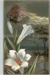 AK / Ansichtskarte Schmetterlinge Blume Litho Kat. Tiere