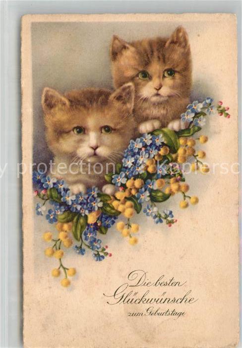 Ak Ansichtskarte Katzen Geburtstag Vergissmeinnicht Kat Tiere Nr