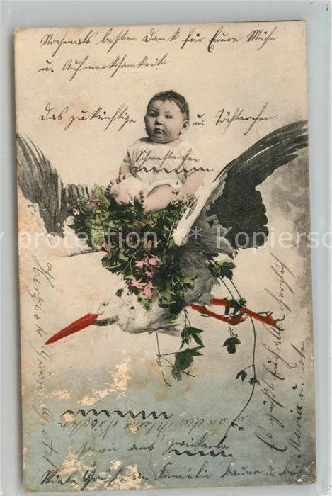 AK / Ansichtskarte Storch Baby  Kat. Tiere