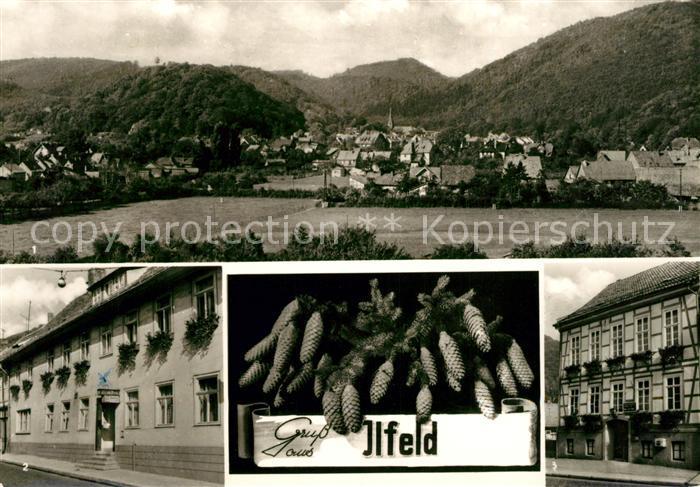 AK / Ansichtskarte Ilfeld Suedharz Panorama Gaststaette zur Krone Gaststaette zur Linde Kat. Ilfeld Suedharz