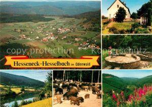AK / Ansichtskarte Hesselbach Odenwald Gasthaus Pension Drei Lilien Wildpark Flugaufnahme Kat. Hesseneck