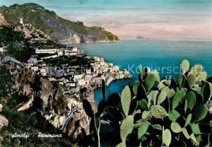 AK / Ansichtskarte Amalfi Panorama Kueste Kaktus Kat. Amalfi