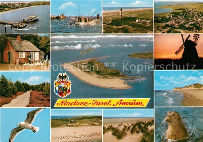 AK / Ansichtskarte Amrum Fliegeraufnahme Insel Moeve Windmuehle Leuchtturm Strand Kat. Nebel