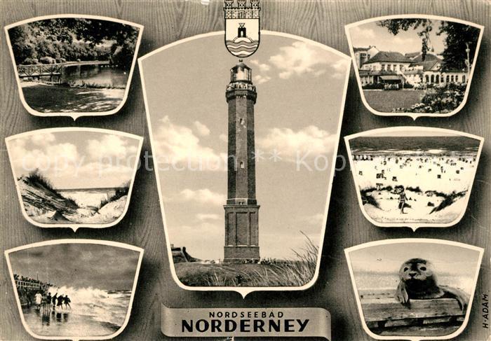 AK / Ansichtskarte Norderney Nordseebad Strand Leuchtturm Robbe Kat. Norderney