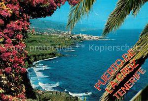 AK / Ansichtskarte Puerto de la Cruz Vista de la Costa Norte Kuestenpanorama Palmen Kat. Puerto de la Cruz Tenerife