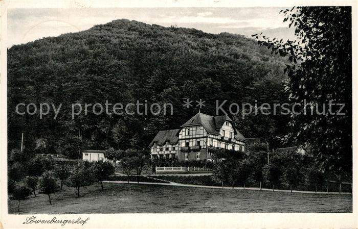 AK / Ansichtskarte Siebengebirge Hotel Loewenburgerhof Kat. Koenigswinter