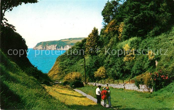 AK / Ansichtskarte Seaton East Devon The Chine Coast Panorama Kueste Kat. East Devon