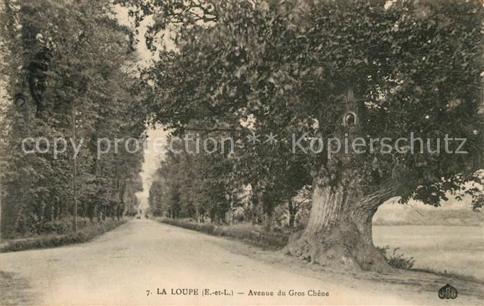AK / Ansichtskarte Gros Chene Hainaut La Loupe Kat.
