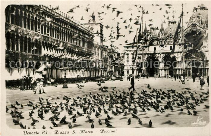 AK / Ansichtskarte Venezia Venedig Piazza S. Marco  Kat.