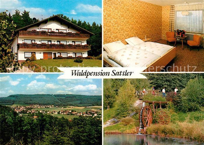 AK / Ansichtskarte Grasellenbach Waldpension Sattler  Kat. Grasellenbach