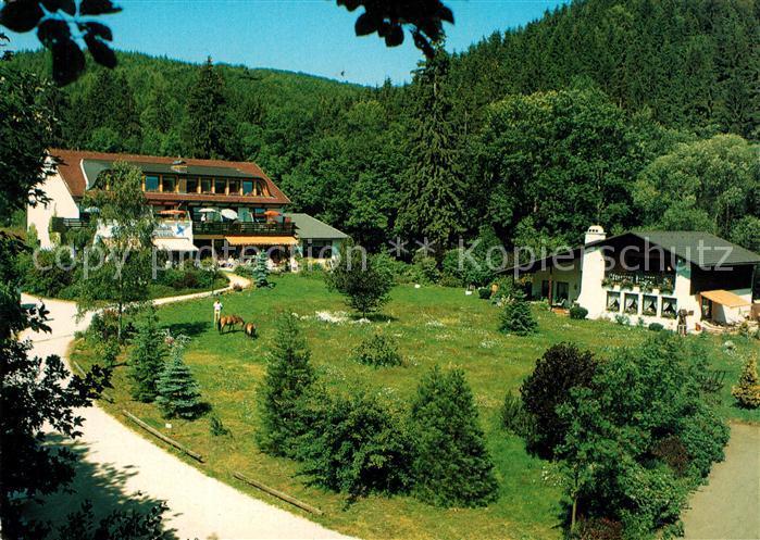 AK / Ansichtskarte Steina Suedharz Hotel Pension Cafe Landhaus Helmboldt Waldpromenade Kat. Bad Sachsa
