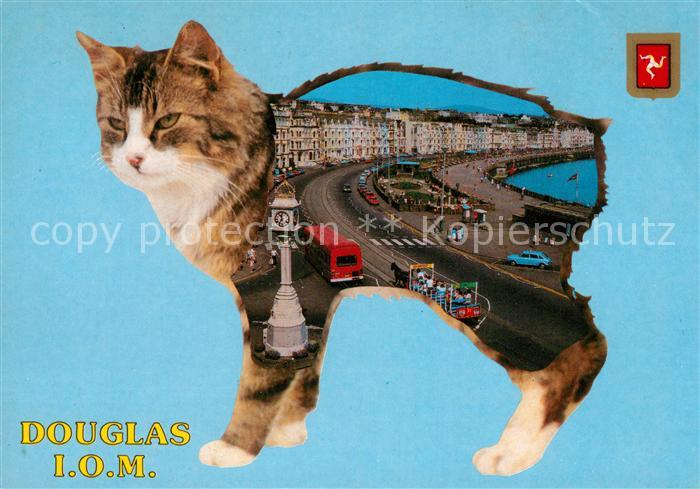 AK / Ansichtskarte Douglas Isle of Man Uferstrasse Standuhr Katze Kat. Douglas