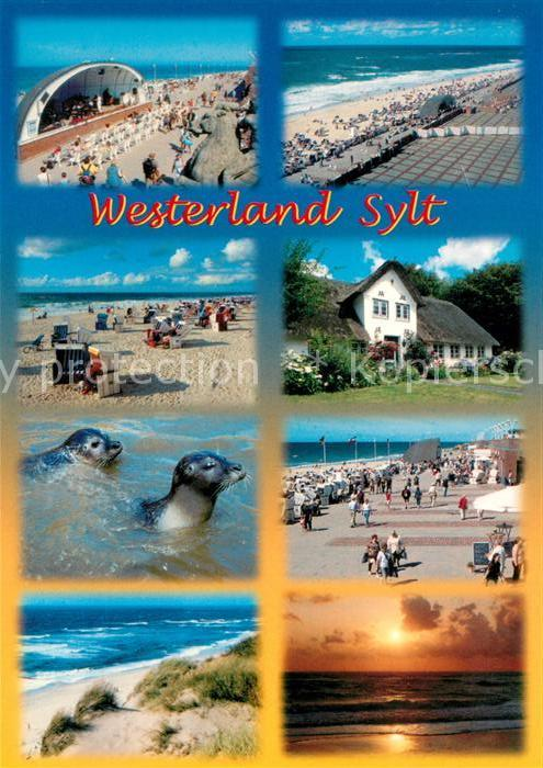 Westerland Sylt Konzertpavillon Strand Promenade Friesenhaus Seehund Duenen Sonnenuntergang Kat. Westerland