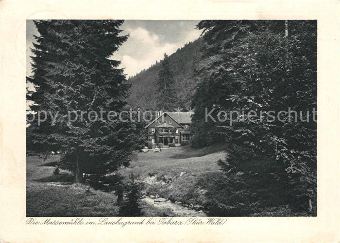 AK / Ansichtskarte Tabarz Massemuehle im Lauchagrund Kat. Tabarz Thueringer Wald