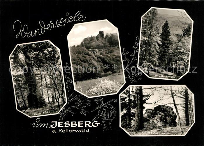 Jesberg Dicke Eiche Burg Jesberg Kellerwald Schwalmer Steine Kat. Jesberg