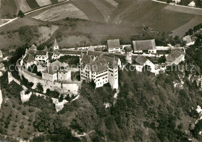 AK / Ansichtskarte Harburg Schwaben Fliegeraufnahme Schloss Harburg Kat. Harburg (Schwaben)