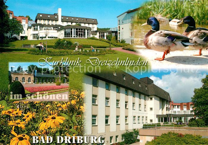 AK / Ansichtskarte Bad Driburg Kurklinik Dreizehnlinden Bad Driburg Kat. Bad Driburg