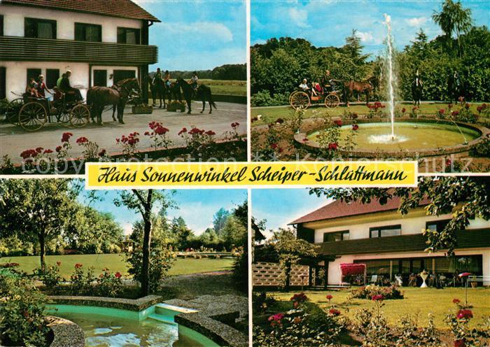 AK / Ansichtskarte Bad_Laer Haus Sonnenwinkel Pension Scheiper  Bad_Laer Kat. Bad Laer