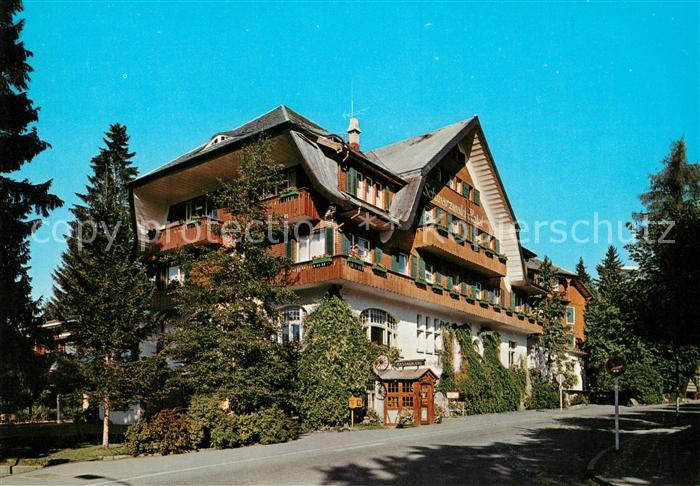 Ak ansichtskarte titisee schwarzwald hotel titisee kat for Schwarzwald design hotel