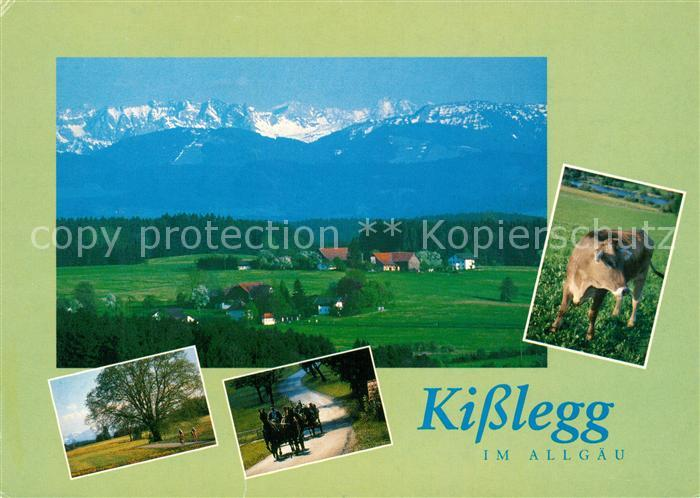 AK / Ansichtskarte Kisslegg Landschaftspanorama mit Alpenkette Kutschfahrten Kuh Kisslegg Kat. Kisslegg