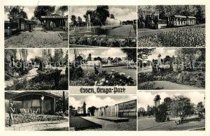 AK / Ansichtskarte Essen_Ruhr Gruga Park Bahnhof Wasserspiele Parkpartien Essen_Ruhr