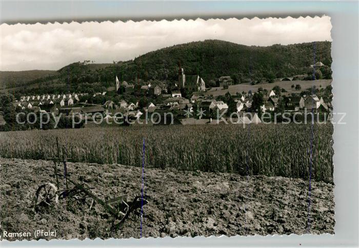 AK / Ansichtskarte Ramsen_Pfalz Blick ueber die Felder zum Ort Feldarbeit Egge Ramsen Pfalz