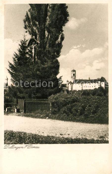 AK / Ansichtskarte Dillingen_Donau Blick zum Schloss Dillingen Donau