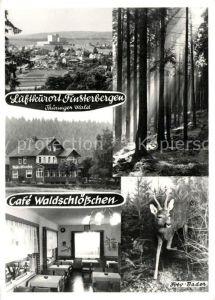 AK / Ansichtskarte Finsterbergen Cafe Waldschloesschen Finsterbergen