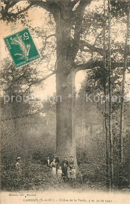 AK / Ansichtskarte Gambais Chene de la Verdy Gambais
